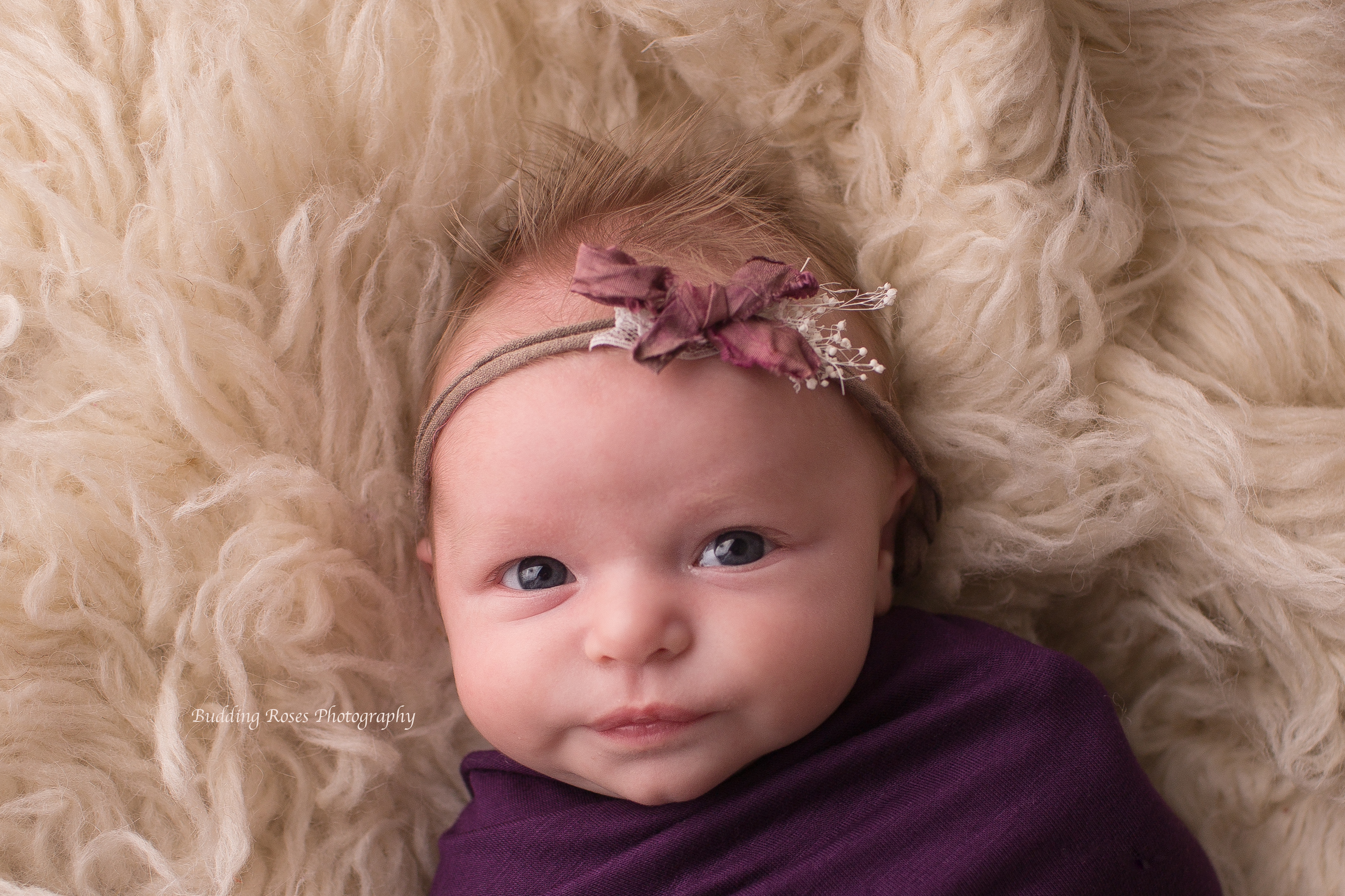 new jersey photographer, newborn baby pictures, newborn picture session, baby girl photos, images of newborns, hunterdon county nj photographer, baby girl picture session
