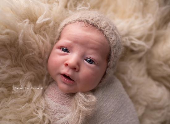 newborn baby boy, flemington nj photographer, flemington new jersey newborn photographer, baby boy photographer